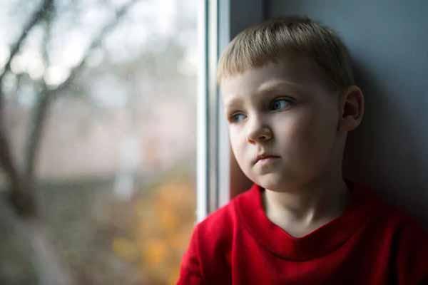 Льготы и выплаты для сирот и детей без попечения родителей