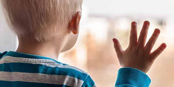 Виды и размеры выплат усыновителю, опекуну, попечителю